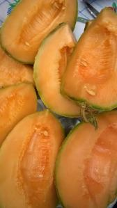 närbild fransk melon