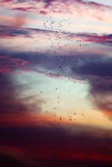 rodrandig-himmel