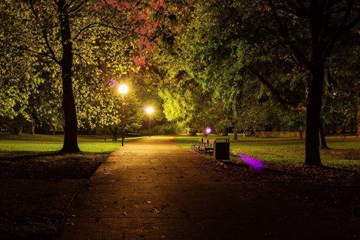 park-natt