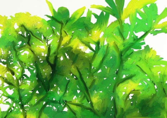 kumkumam djungelgrönt